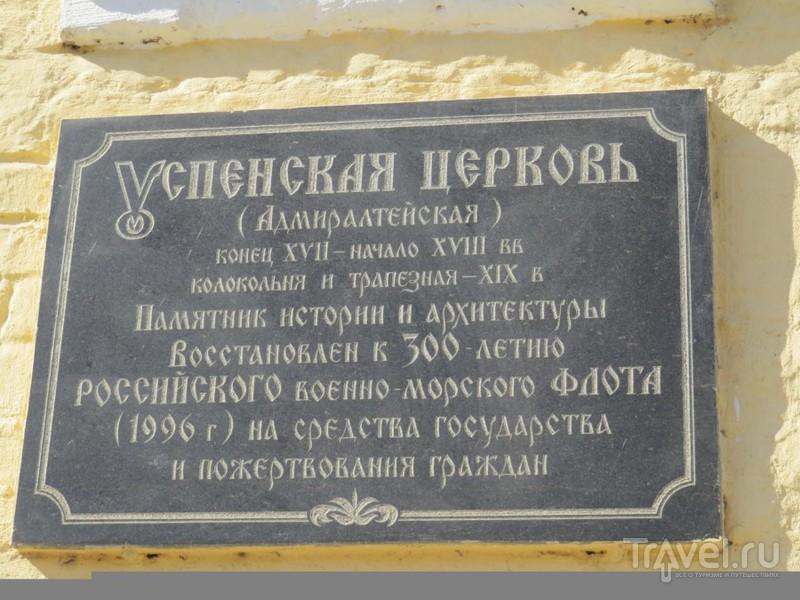 Воронеж. Усадьба, котенок и акулы / Фото из России