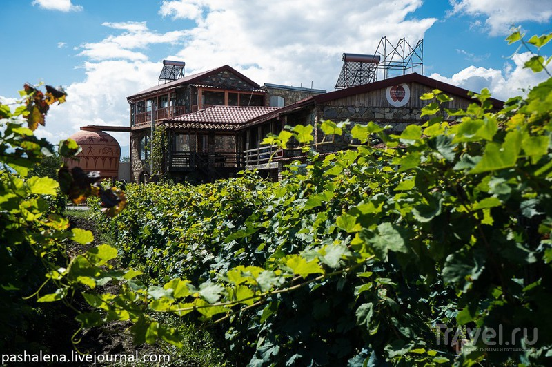 Кахетия - винный регион Грузии / Фото из Грузии