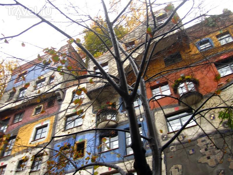 Где в Вене в пасмурный день можно обнаружить яркие краски? Я вам покажу... / Австрия