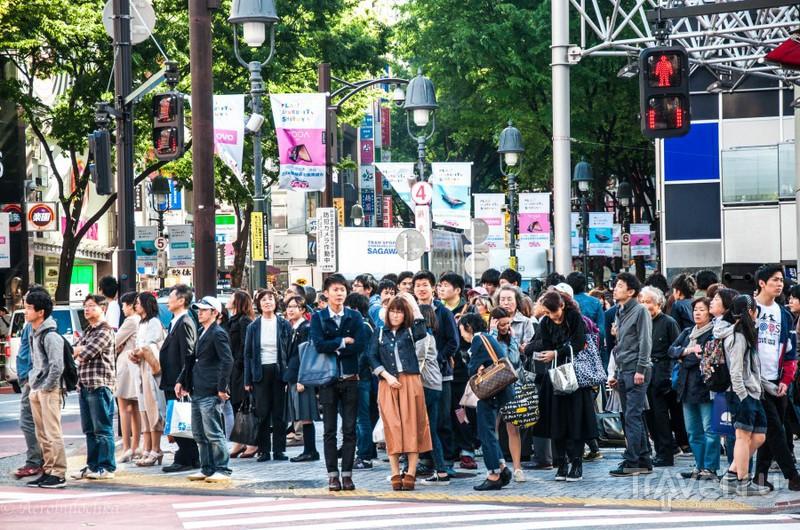 Токио за 2,5 дня / Фото из Японии