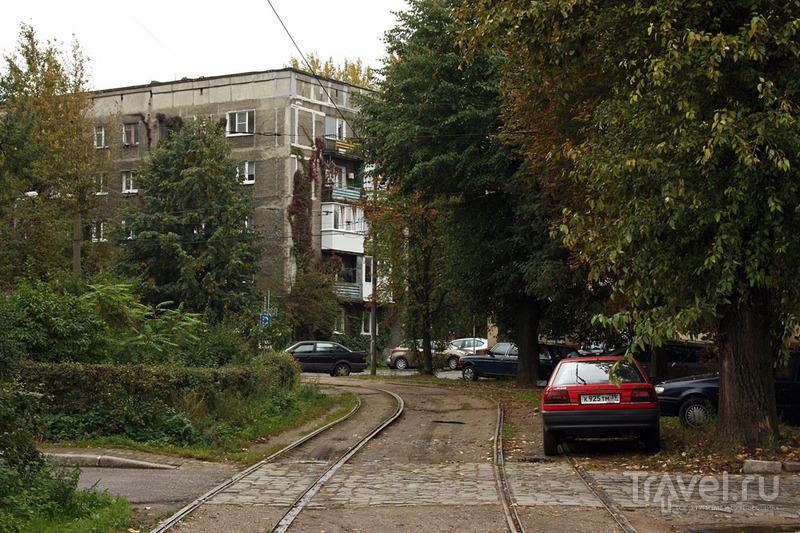 Калининград в сентябре / Фото из России