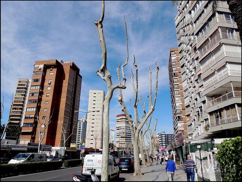 Бенидорм. Испания / Испания
