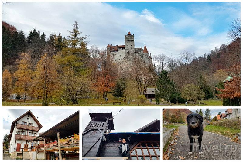 Хроники Трансильвании. О деревне Бран и замке графа Дракулы / Румыния