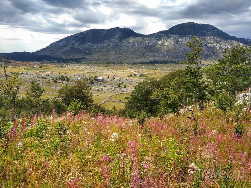 Панорамный маршрут Круг около Корыт (Черногория) / Фото из Черногории