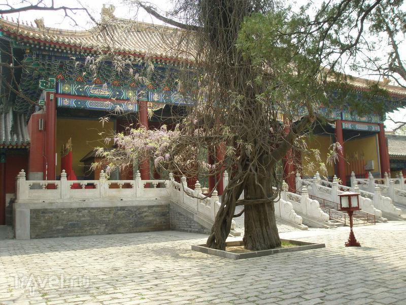 Китай, Пекин нетуристический / Китай