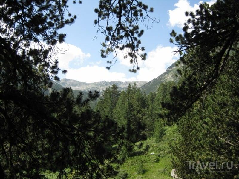 Болгария, Банско, горы / Фото из Болгарии