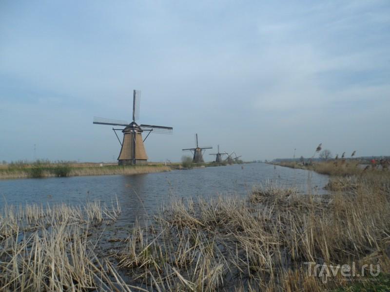 Объекты Юнеско в Голландии. Мельницы Киндердайка / Нидерланды