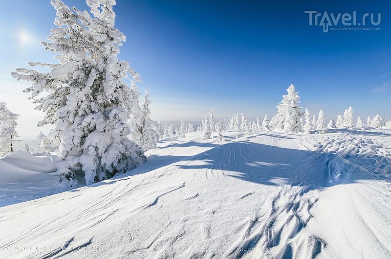 Зиму хотели? Получите. Шерегеш / Фото из России