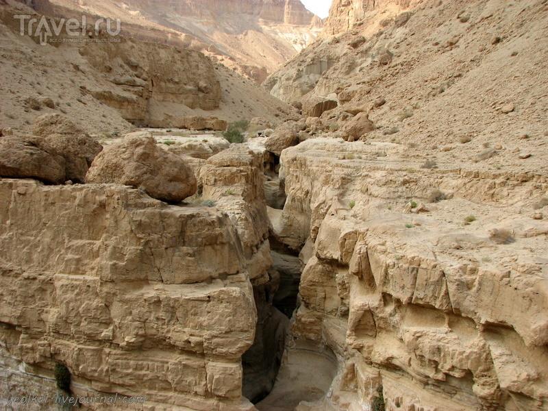 Каньоны Мертвого моря. Ущелье Цеелим. Гай Баhак / Фото из Израиля