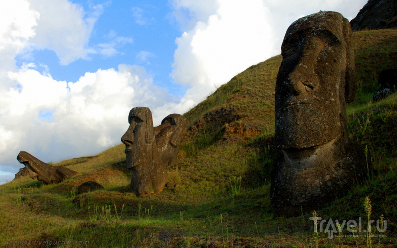 Рано Рараку - здесь рождались моаи / Фото из Чили