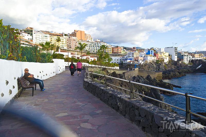 Тенерифе в декабре / Фото из Испании