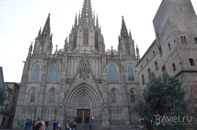 В Баселону без денег, багажа и мужа / Испания
