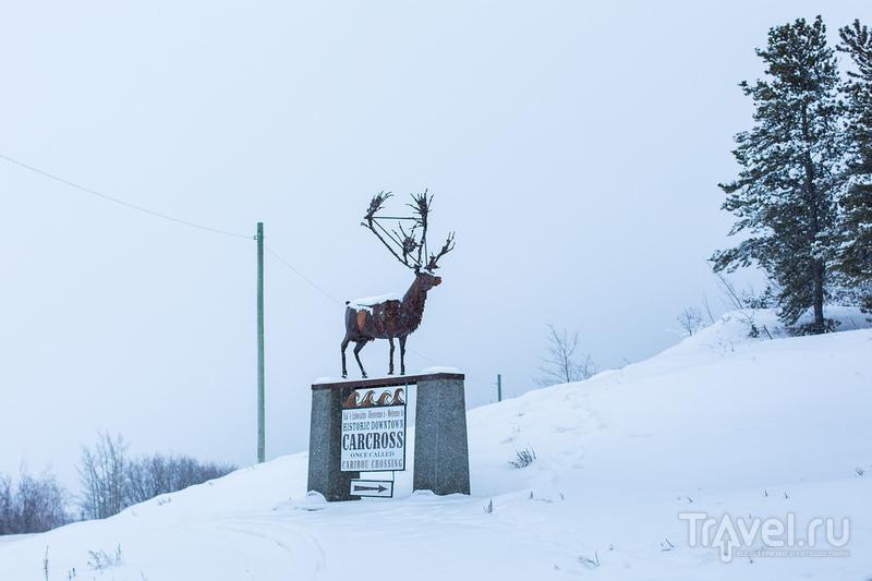 Канада. Юкон / Фото из Канады