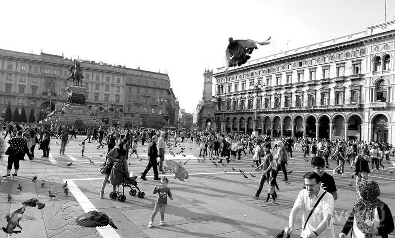Милан. Одна фотография / Италия