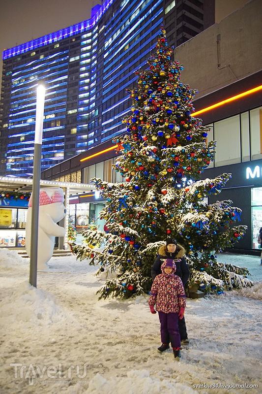 Новогодняя Москва: путешествие в Рождество / Фото из России