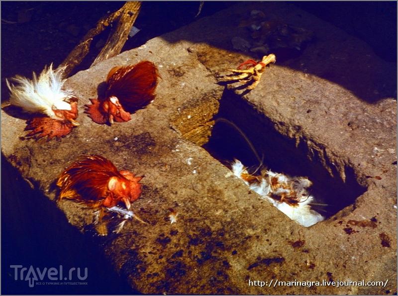 Путешествия по СССР. Армения. Вокруг Дилижана: монастыри и петушиные головы / Армения