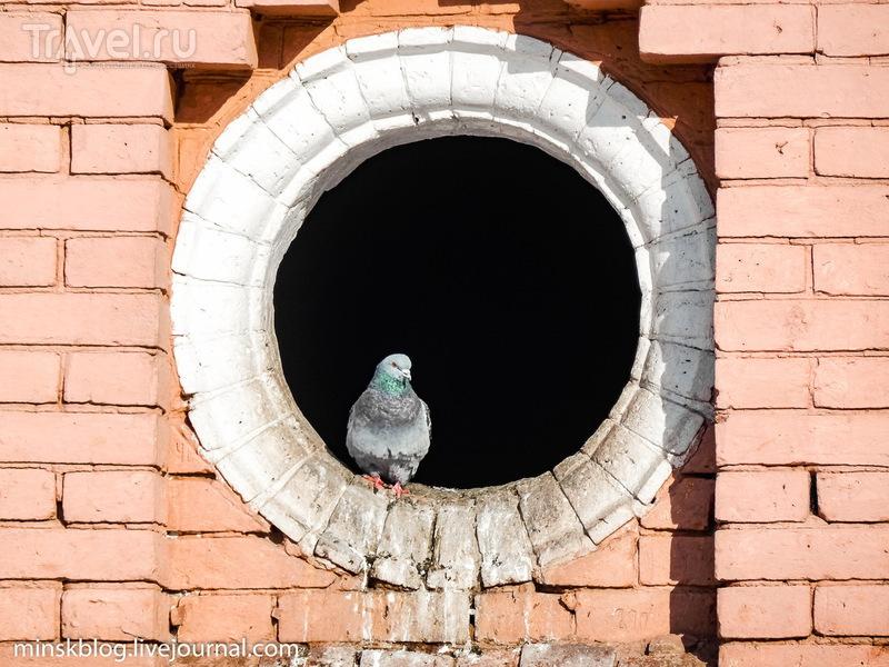 Ростокинский акведук. Памятник архитектуры, о котором никто не знает / Фото из России
