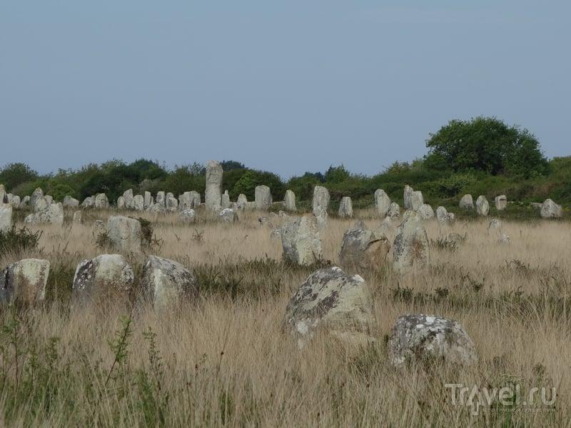 Карнакские камни. Самое мистическое место Франции / Фото из Франции