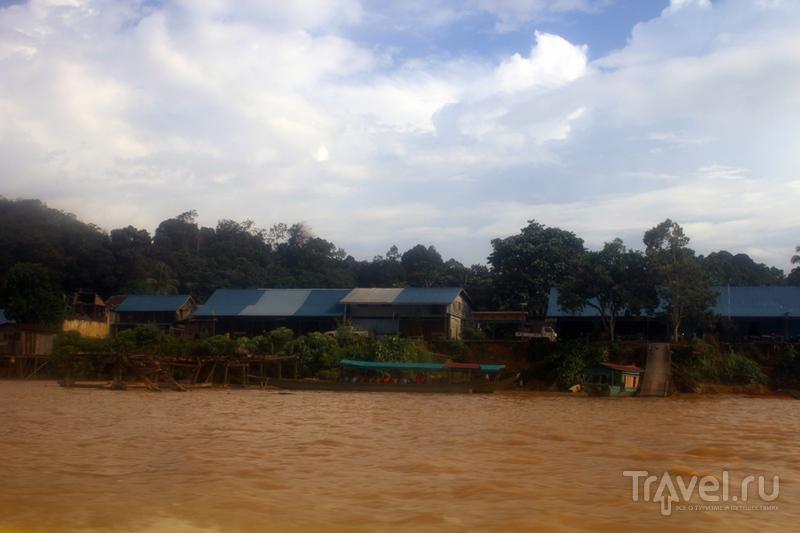 Капит - затерянный мир в глубине острова Борнео / Фото из Малайзии