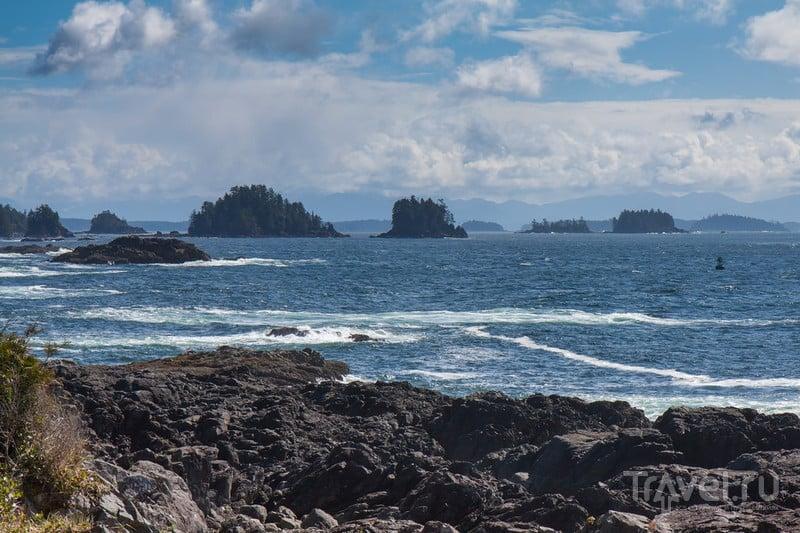 Канада. Остров Ванкувер / Фото из Канады