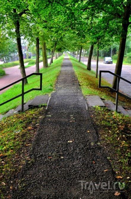 Роттердам, Нидерланды / Фото из Нидерландов