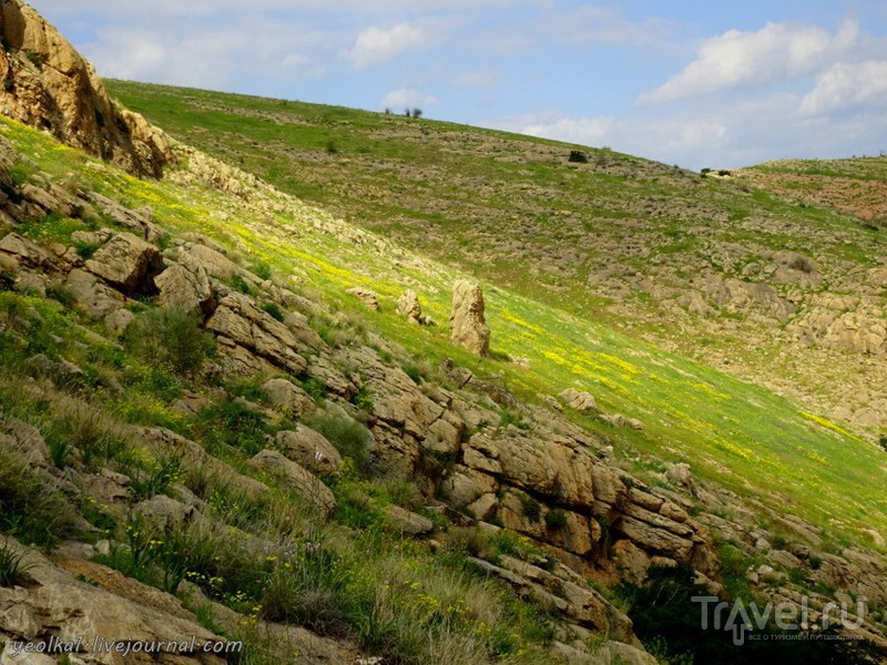 Иорданская долина. Вади Такид и вади Фиран / Фото из Израиля