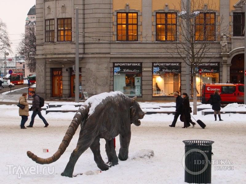 Тигр у вокзала в Осло / Фото из Норвегии