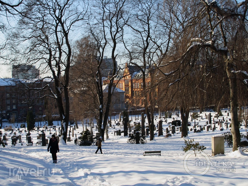Кладбище в центре Осло, Норвегия / Фото из Норвегии