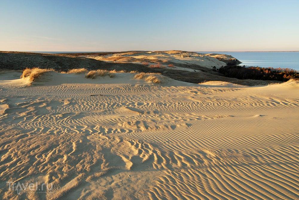 Серые дюны в Куршской косе / Литва