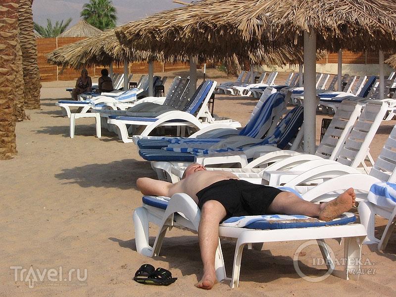 В отелях Иордании с алкоголем проблем нет / Тунис