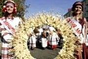 "Фестиваль ""Дожинки"". Фото: Photo.bymedia.net"