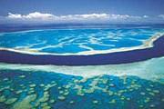 Большой Барьерный риф закроют тентом. // queensland-europe.com