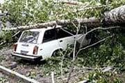 """Скорость ураганного ветра в Европе превышает 100 км в час. // РИА """"Новости"""""""