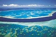 Удобрения губят Большой Барьерный риф. // queensland-europe.com