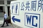 Гигантский туалет может попасть в Книгу рекордов Гиннесса. // AP