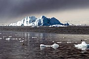 Туристам покажут освободившийся ото льда остров. // GettyImages