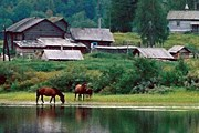 Деревня на территории Кенозерского национального парка // olegu.narod.ru