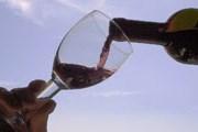 Праздник молодого вина начался в Италии. // static.blogo.it