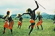 Племена уничтожают редких хищников. // nationalgeographic.com