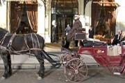 Прогулки в карете - новая услуга отеля Plaza Athenee. // plaza-athenee-paris.com