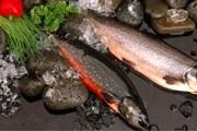 Исландская кухня базируется на рыбе и морепродуктах. // curioweb.is