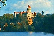 В замке Конопиште можно увидеть медведя. // btinternet.com