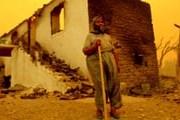 В Анталье сгорели несколько деревень. // todayszaman.com