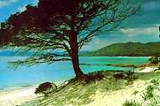 Живописная природа и песчаные пляжи делают отдых на Корсике привлекательным. // sens-de-la-vie.com