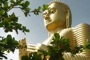 Памятники Шри-Ланки привлекают все больше туристов. // А.Баринова
