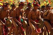 «Копы в стрингах» появятся на фестивале Panagbenga. // etravelpilipinas.com
