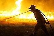 Борьба с огнем продолжается много часов. // AP