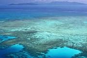 Большой Барьерный риф внесен в Список Всемирного наследия ЮНЕСКО. // Travel.ru