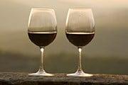 Август - лучшее время дегустировать вина Венгрии. // GettyImages