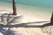 Маврикий предлагает идеальные пляжи. // Travel.ru